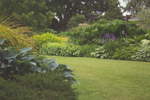 Je tuin verbouwen? Hier moet je aan denken