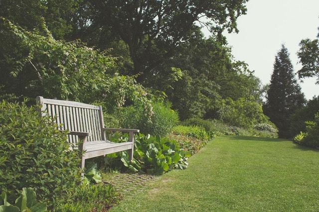 Hoe kom je de zomer het beste door in je tuin?